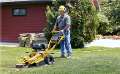 Where to rent GRINDER, STUMP PORTABLE GAS 9 in New Port Richey FL