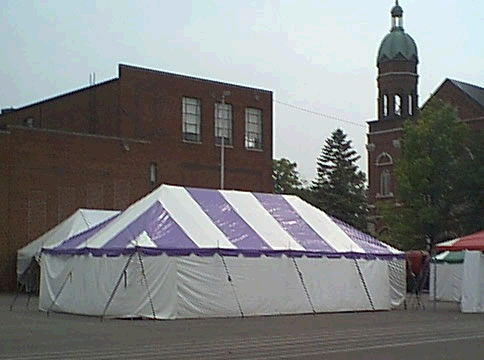 Where to find 30 x 30  Purple   White Frame Tent in New Port Richey