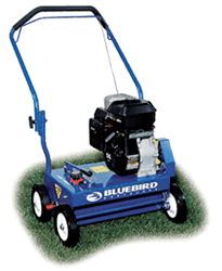Where to find Power Rake 20  Lawn Dethacher in Tampa Bay