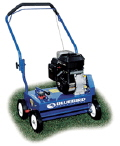 Rental store for Power Rake 20  Lawn Dethacher in Tampa Bay FL
