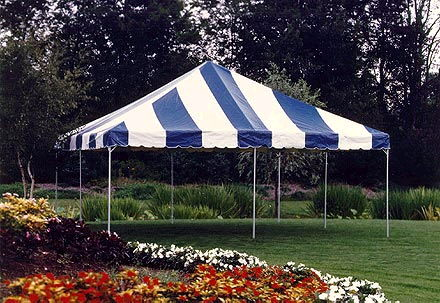 Where to find 15 x15  Blue White frame tent in New Port Richey