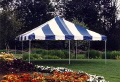Where to rent 15 x15  Blue White frame tent in New Port Richey FL